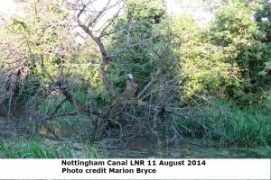 nottm canal