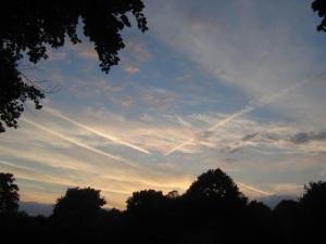 Sunset over the Arboretum