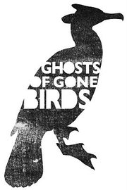 Ghosts of birds gone by image