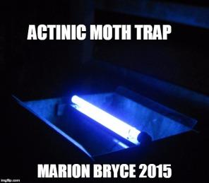 actinic meme
