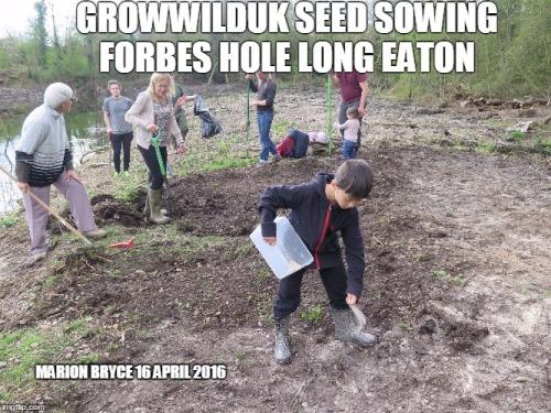 seed sowing meme