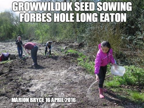 seedsowing meme1